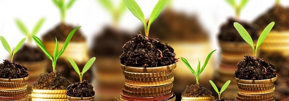inversión por dividendos blog