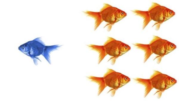 estrategia de inversión contrarian en Bolsa
